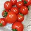 ソムリエ トマト