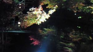 高台寺 池に映る紅葉