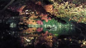 永観堂 池に映る紅葉 (2)